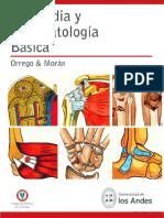 Ortopedia y Traumatología Básica