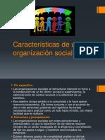 Características de una organización social MIO.pptx