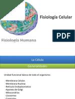 01 Fiisologia de La Celula