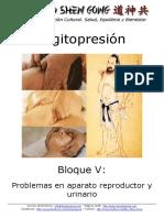 Digitopresion - Bloque v - Problemas en Aparato Reproductor y Urinario