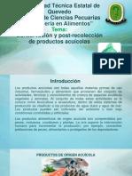 10_Productos-Acuicolas