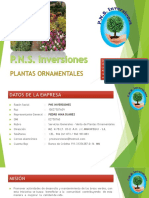 PNS INVERSIONES.pptx