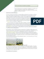 teleferico impacto ambiental