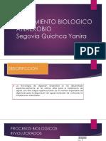 TRATAMIENTO BIOLOGICO ANAEROBIO