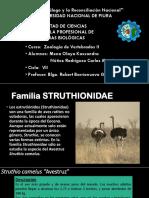 Seminario-Mena-Núñez2.pptx