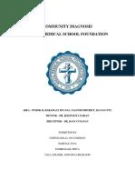 Community Diagnosis