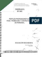 Perfiles Profesiograficos Para Promocion y Contratacion de Personal