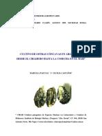 100804_Cultivo de Ostras Cóncavas en La Argentina Desde El Criadero Hasta La Cosecha en El Mar