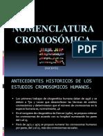Nomenclatura-Cromosomica