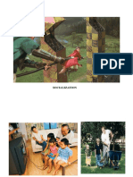 Socialisation.pdf