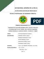 Informe Final Cuencas Clorinda Matos de Turner