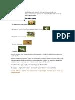Nuevo Documento de Microsoft Office Word (8)