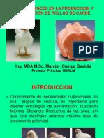 A Clase 04  Avances en Produccion de  Pollos de Carne.ppt