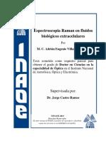 VillanuevaLuAE.pdf