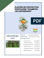 PROYECTO DE EXPORTACION DE SHAMPOO DE ESPARRAGOS