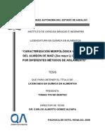 Caracterizacion Morfologica y Termica Almidon de Maiz