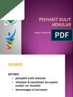 Penyuluhan Penyakit kulit menular.pptx