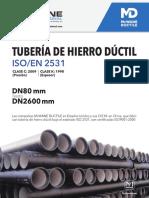 iso-en-tuber-a-de-hierro-d-ctil-651dfd91.pdf