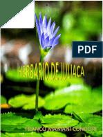 HERBARIODoc1.docx