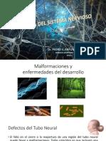 Class Neuro Pat Esp