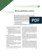 micosis2