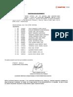 POLI CPG AYAVIRI  JULIACA PUNO.docx
