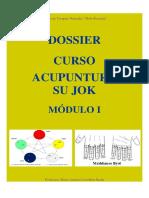 Dossier - Curso Acupuntura Su Jok