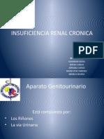 Insuficiencia Renal Cronica Exposicion