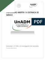 IICM_U1_A1_IRWR