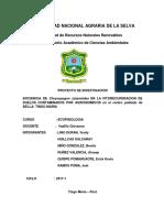 Trabajo Ecofisiologia Final