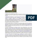 Articles-296037 Blanca Correa