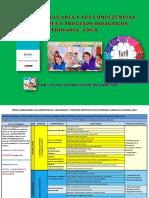 ÁreaCurricuCapacidaProcesos Didá.pdf
