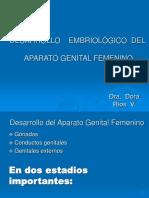EMBRIOL.- AP. FEMENINO - 18.ppt