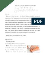 CORTES DE CARNES DE DIFERENTES ESPECIES-INFORME-UNSAAC