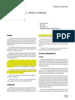 270734938-Yacimiento-La-Arena-Virgen-pdf.pdf