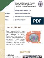 Gastroenteritis Sol
