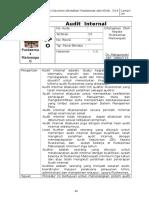 10.SPO Audit Internal.doc