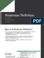 Sindrome Nefrotico Nefro LM EG