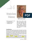 Bb6-Metabolisme.pdf