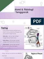 Anatomi Dan Fisiologi Tenggorok