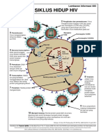 HIV-siklus hidup.pdf