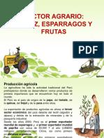 Exposicion Sector Agrario