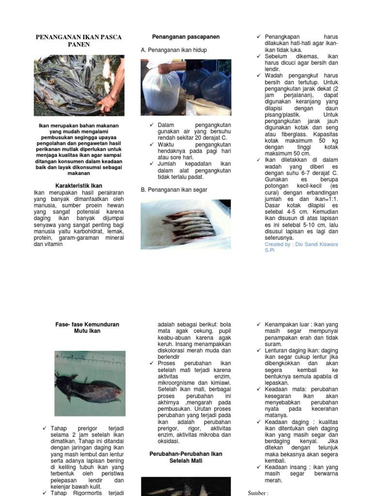 Leaflet Penanganan Ikan Pasca Panen