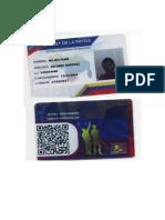 carnet de la patria mili.pdf.docx