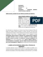 Interpone Demanda Constitucional de Amparo Carlos Trigozo Arevalo