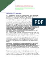 6908016-Steiner-Tratado-de-Medicina-Antroposofica.pdf