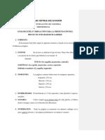 Normas de Presentación Del Pis