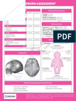 OB 101 Newborn Assessment