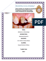 Adhesion en Odontologia