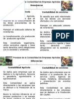semejanzasydiferenciasempresasagricolasyservicios-130224083114-phpapp01.pptx